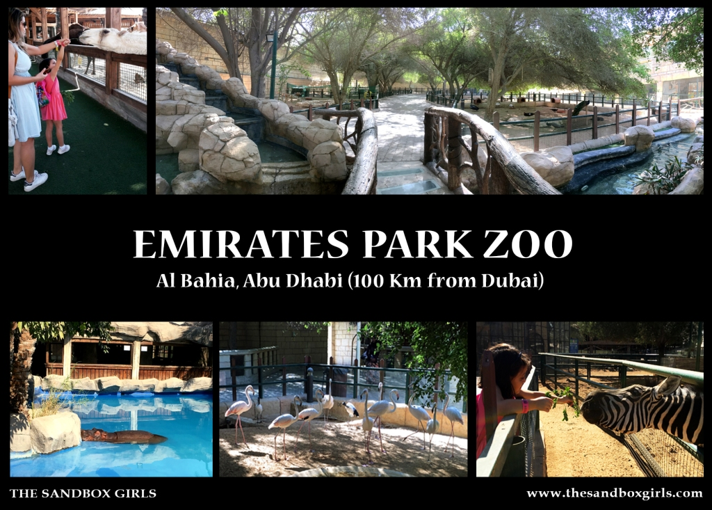Emirates Park Zoo - The Sandbox Girls